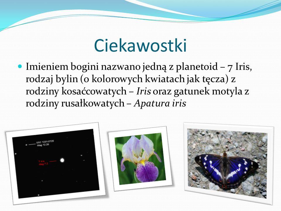 Koniec ! : ) Prezentację przygotowała : Magda Nowak kl. 1 f źródła: wikipedia.pl google grafika