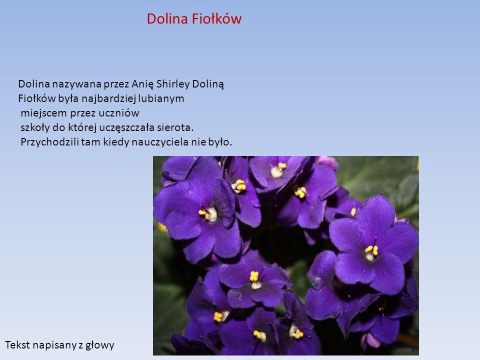Dolina Fiołków Dolina nazywana przez Anię Shirley Doliną Fiołków była najbardziej lubianym miejscem przez uczniów szkoły do której uczęszczała sierota