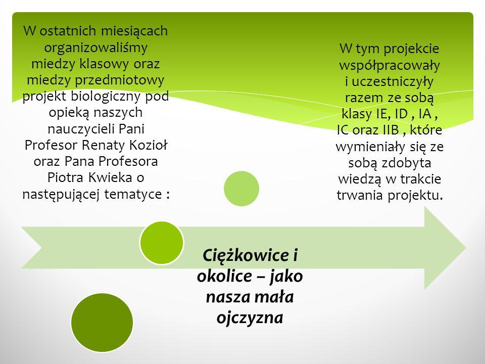Celem naszej współpracy było przedstawienie form ochrony przyrody w Polsce na podstawie form przyrodniczych występujących w okolicach Ciężkowic oraz poprzez przedstawienie wspomnianego można by rzec rolniczo- historycznego już miasteczka Ciężkowice – jako naszej małej ojczyzny, z która każdy z nas może się identyfikować.