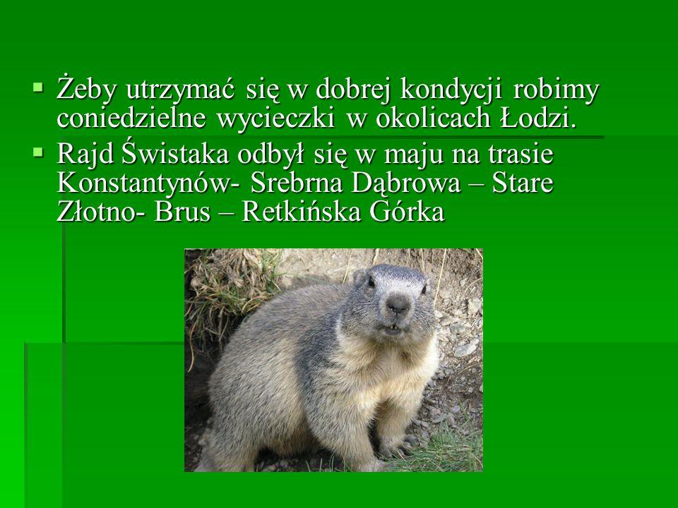 Żeby utrzymać się w dobrej kondycji robimy coniedzielne wycieczki w okolicach Łodzi. Żeby utrzymać się w dobrej kondycji robimy coniedzielne wycieczki
