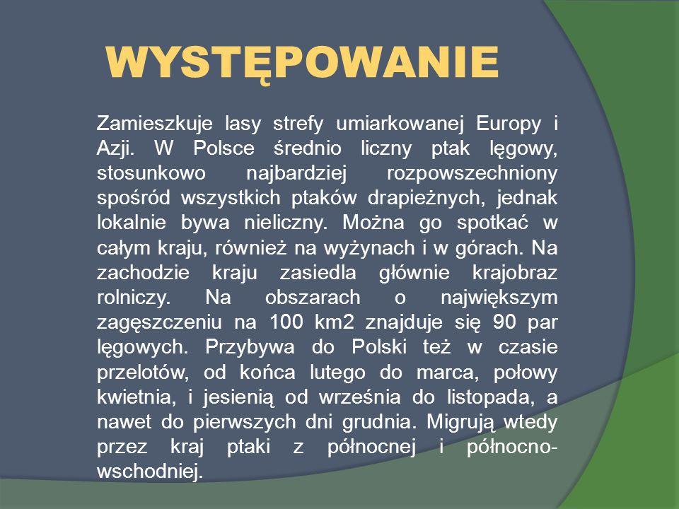 WYSTĘPOWANIE Zamieszkuje lasy strefy umiarkowanej Europy i Azji. W Polsce średnio liczny ptak lęgowy, stosunkowo najbardziej rozpowszechniony spośród
