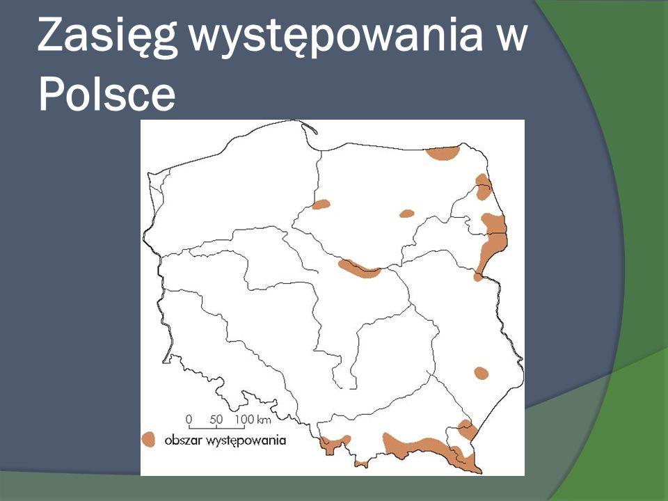Zasięg występowania w Polsce
