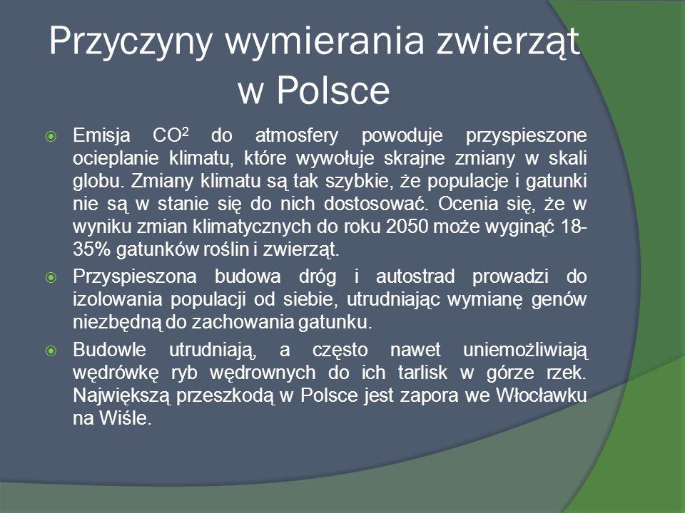 Przyczyny wymierania zwierząt w Polsce Emisja CO 2 do atmosfery powoduje przyspieszone ocieplanie klimatu, które wywołuje skrajne zmiany w skali globu