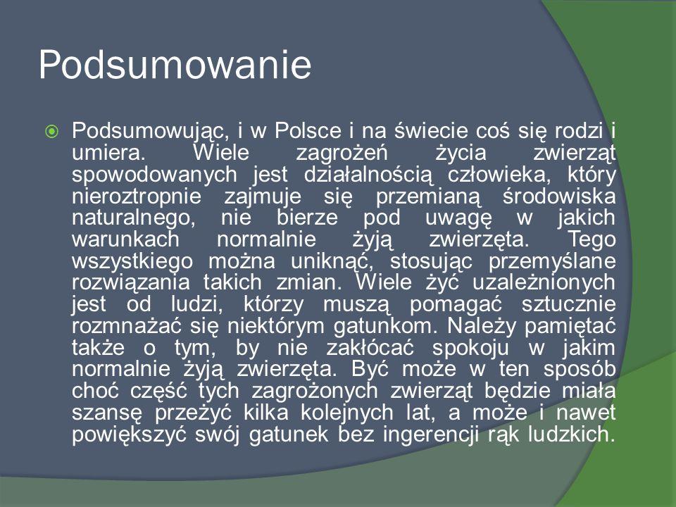 Podsumowanie Podsumowując, i w Polsce i na świecie coś się rodzi i umiera. Wiele zagrożeń życia zwierząt spowodowanych jest działalnością człowieka, k
