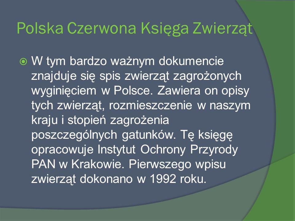 Polska Czerwona Księga Zwierząt W tym bardzo ważnym dokumencie znajduje się spis zwierząt zagrożonych wyginięciem w Polsce. Zawiera on opisy tych zwie
