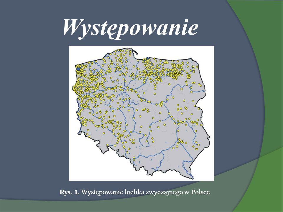 Występowanie Rys. 1. Występowanie bielika zwyczajnego w Polsce.