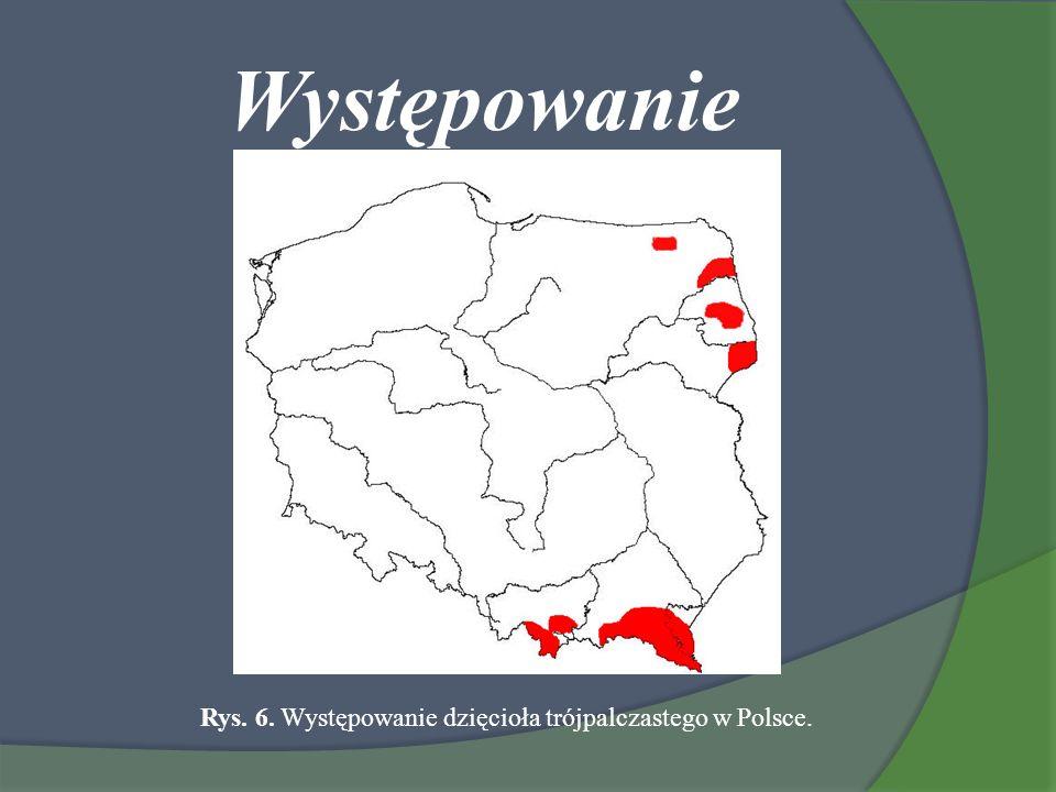 Występowanie Rys. 6. Występowanie dzięcioła trójpalczastego w Polsce.