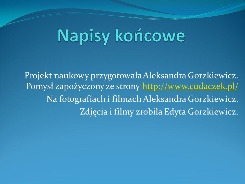 Projekt naukowy przygotowała Aleksandra Gorzkiewicz. Pomysł zapożyczony ze strony http://www.cudaczek.pl/http://www.cudaczek.pl/ Na fotografiach i fil
