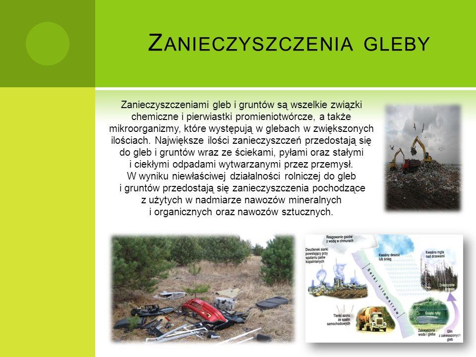 Z ANIECZYSZCZENIA GLEBY Zanieczyszczeniami gleb i gruntów są wszelkie związki chemiczne i pierwiastki promieniotwórcze, a także mikroorganizmy, które