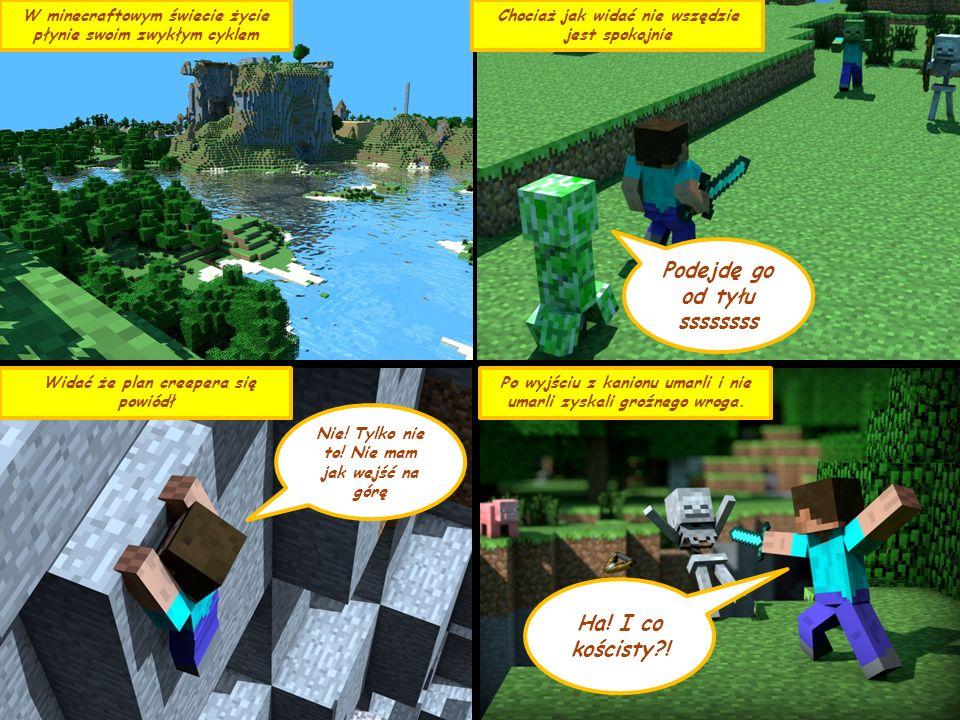 W minecraftowym świecie życie płynie swoim zwykłym cyklem Chociaż jak widać nie wszędzie jest spokojnie Podejdę go od tyłu ssssssss Widać że plan creepera się powiódł Nie.