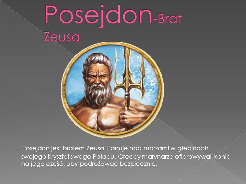 Posejdon jest bratem Zeusa.Panuje nad morzami w głębinach swojego Kryształowego Pałacu.