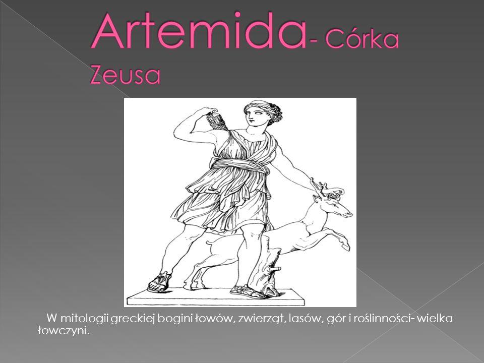 W mitologii greckiej bogini łowów, zwierząt, lasów, gór i roślinności- wielka łowczyni.