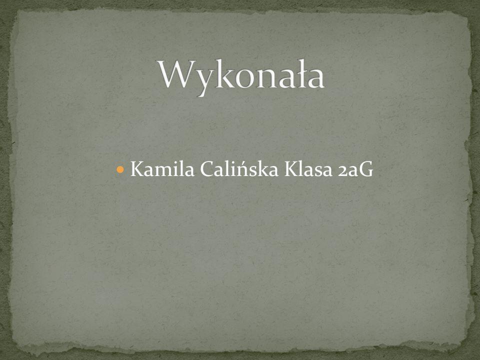 Kamila Calińska Klasa 2aG