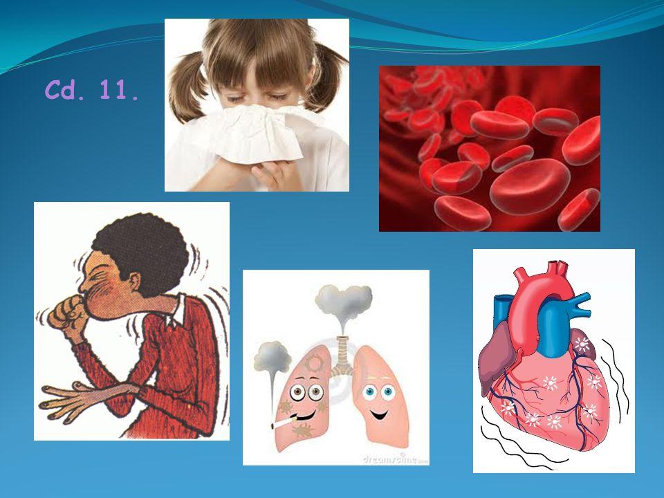11. Wchodzące w skład zanieczyszczonego powietrza szkodliwe związki chemiczne, pyły i znaczna wilgotność są zagrożeniem dla zdrowia, są bowiem czynnik