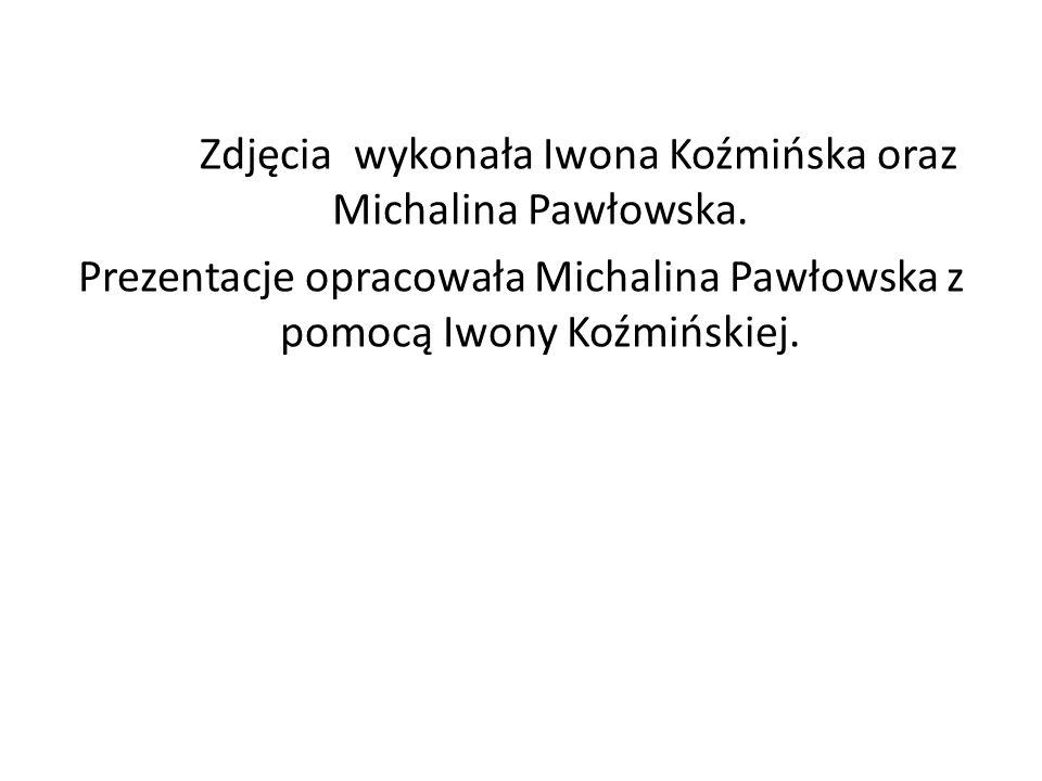 Zdjęcia wykonała Iwona Koźmińska oraz Michalina Pawłowska. Prezentacje opracowała Michalina Pawłowska z pomocą Iwony Koźmińskiej.