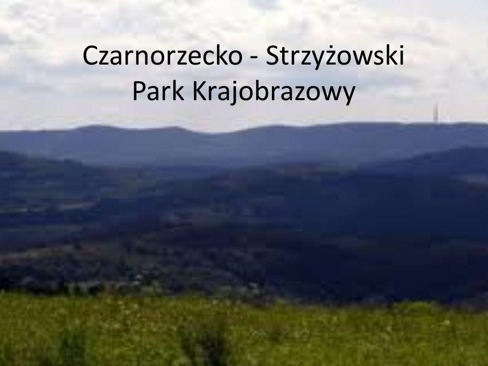 Czarnorzecko - Strzyżowski Park Krajobrazowy