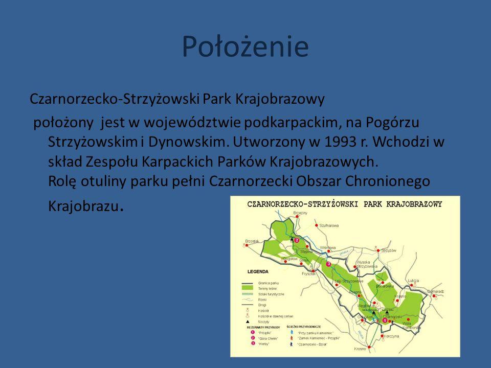 Położenie Czarnorzecko-Strzyżowski Park Krajobrazowy położony jest w województwie podkarpackim, na Pogórzu Strzyżowskim i Dynowskim. Utworzony w 1993