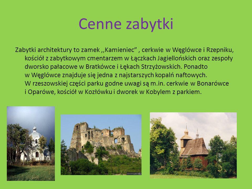 Cenne zabytki Zabytki architektury to zamek,,Kamieniec, cerkwie w Węglówce i Rzepniku, kościół z zabytkowym cmentarzem w Łączkach Jagiellońskich oraz zespoły dworsko pałacowe w Bratkówce i Łękach Strzyżowskich.