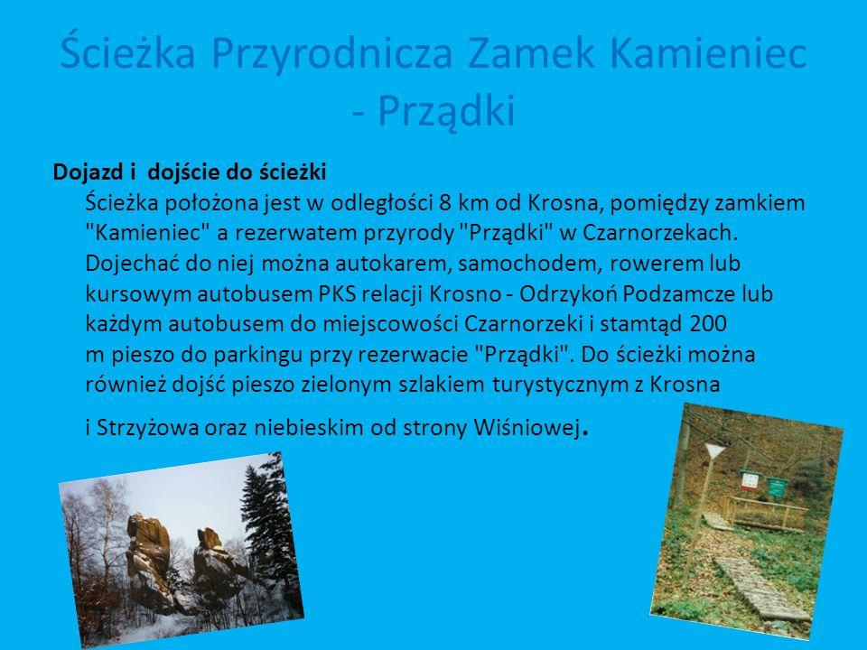 Ścieżka Przyrodnicza Zamek Kamieniec - Prządki Dojazd i dojście do ścieżki Ścieżka położona jest w odległości 8 km od Krosna, pomiędzy zamkiem