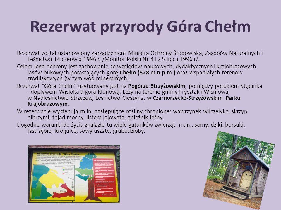 Rezerwat przyrody Góra Chełm Rezerwat został ustanowiony Zarządzeniem Ministra Ochrony Środowiska, Zasobów Naturalnych i Leśnictwa 14 czerwca 1996 r.