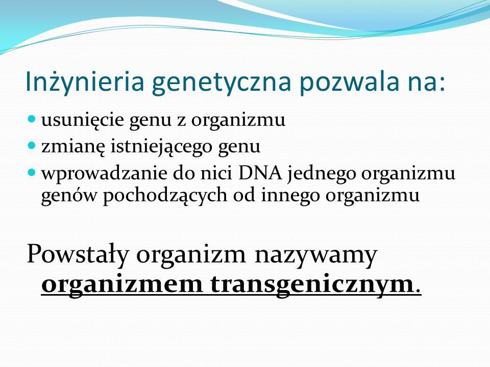 Inżynieria genetyczna pozwala na: usunięcie genu z organizmu zmianę istniejącego genu wprowadzanie do nici DNA jednego organizmu genów pochodzących od