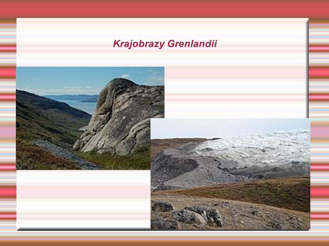 Wygląd Grenlandczyków