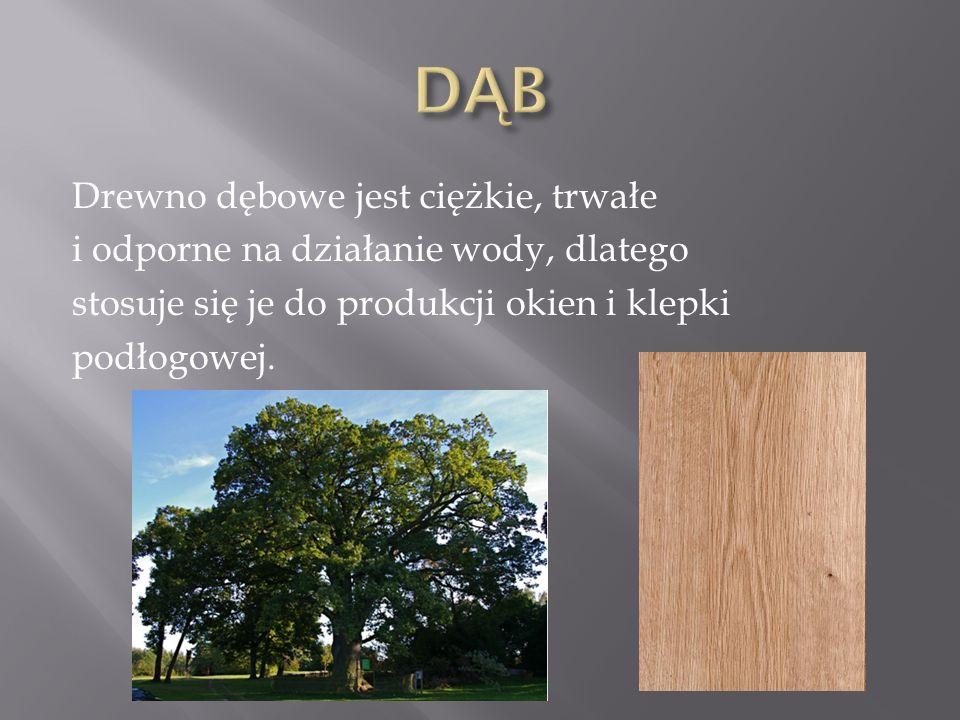 Drewno dębowe jest ciężkie, trwałe i odporne na działanie wody, dlatego stosuje się je do produkcji okien i klepki podłogowej.