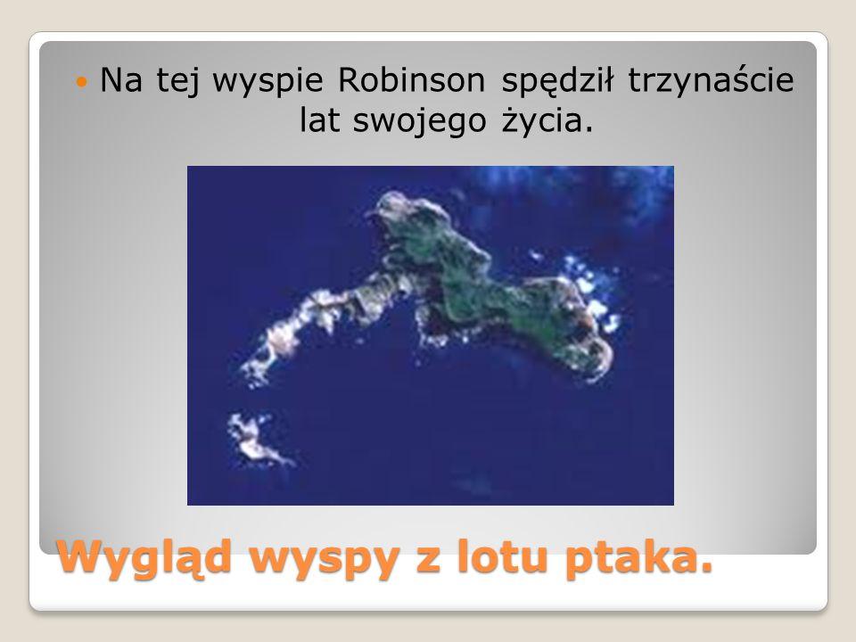 Wygląd wyspy z lotu ptaka. Na tej wyspie Robinson spędził trzynaście lat swojego życia.