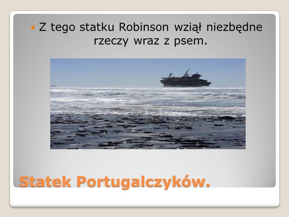 Statek Portugalczyków. Z tego statku Robinson wziął niezbędne rzeczy wraz z psem.