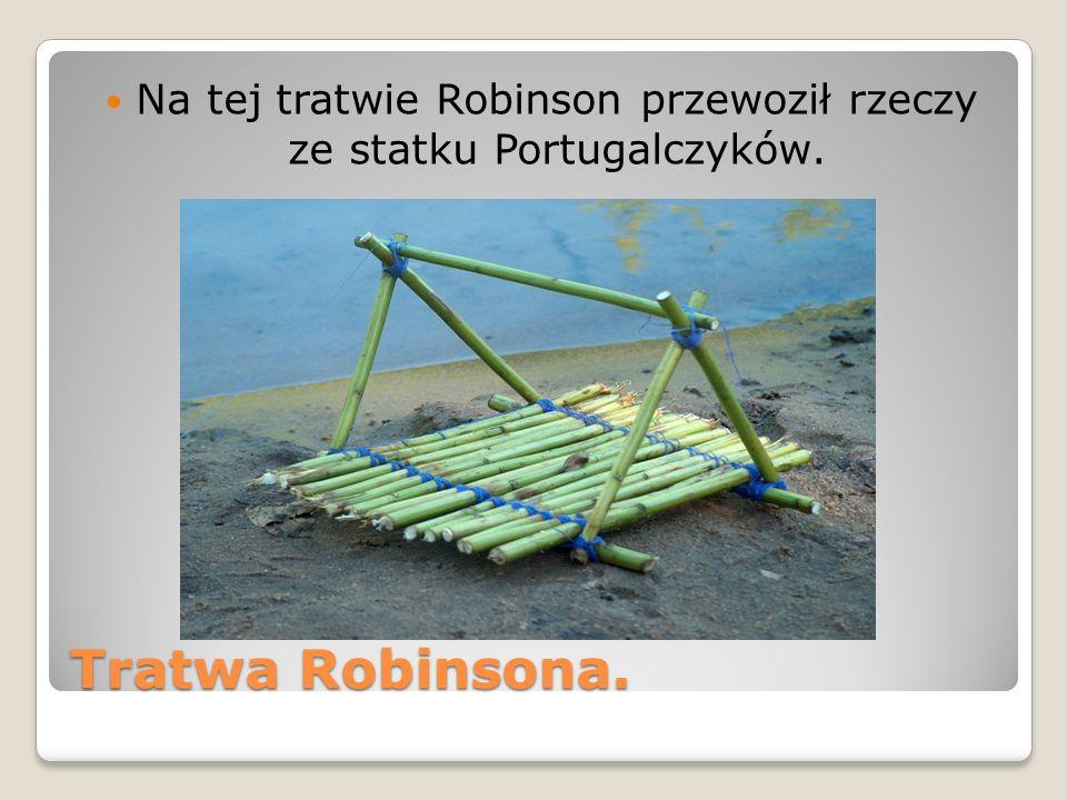 Tratwa Robinsona. Na tej tratwie Robinson przewoził rzeczy ze statku Portugalczyków.