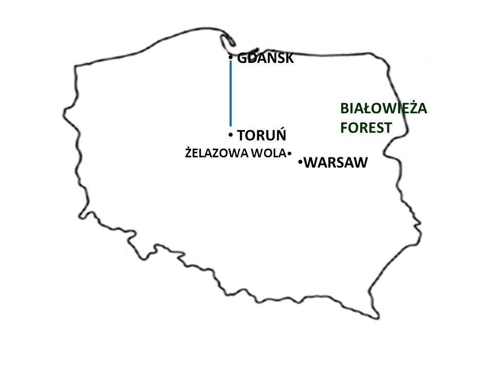 WARSAW BIAŁOWIEŻA FOREST GDAŃSK TORUŃ ŻELAZOWA WOLA