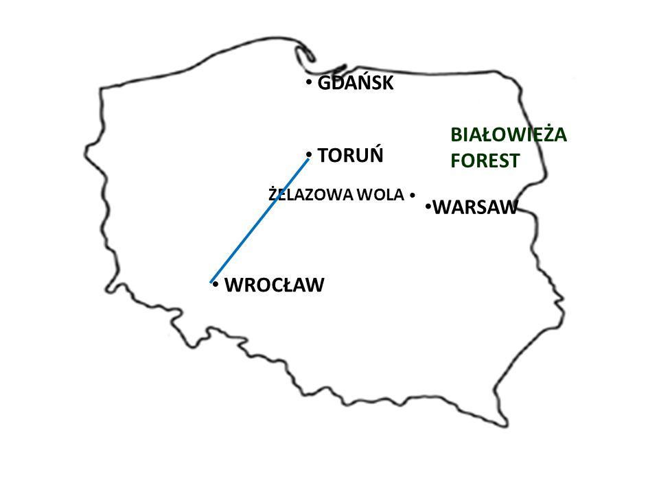 WARSAW BIAŁOWIEŻA FOREST GDAŃSK TORUŃ ŻELAZOWA WOLA WROCŁAW