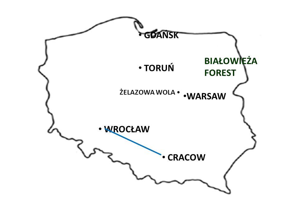 WARSAW BIAŁOWIEŻA FOREST GDAŃSK TORUŃ ŻELAZOWA WOLA WROCŁAW CRACOW