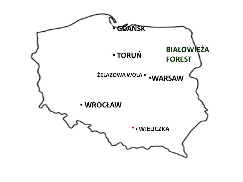 WARSAW BIAŁOWIEŻA FOREST GDAŃSK TORUŃ ŻELAZOWA WOLA WROCŁAW WIELICZKA