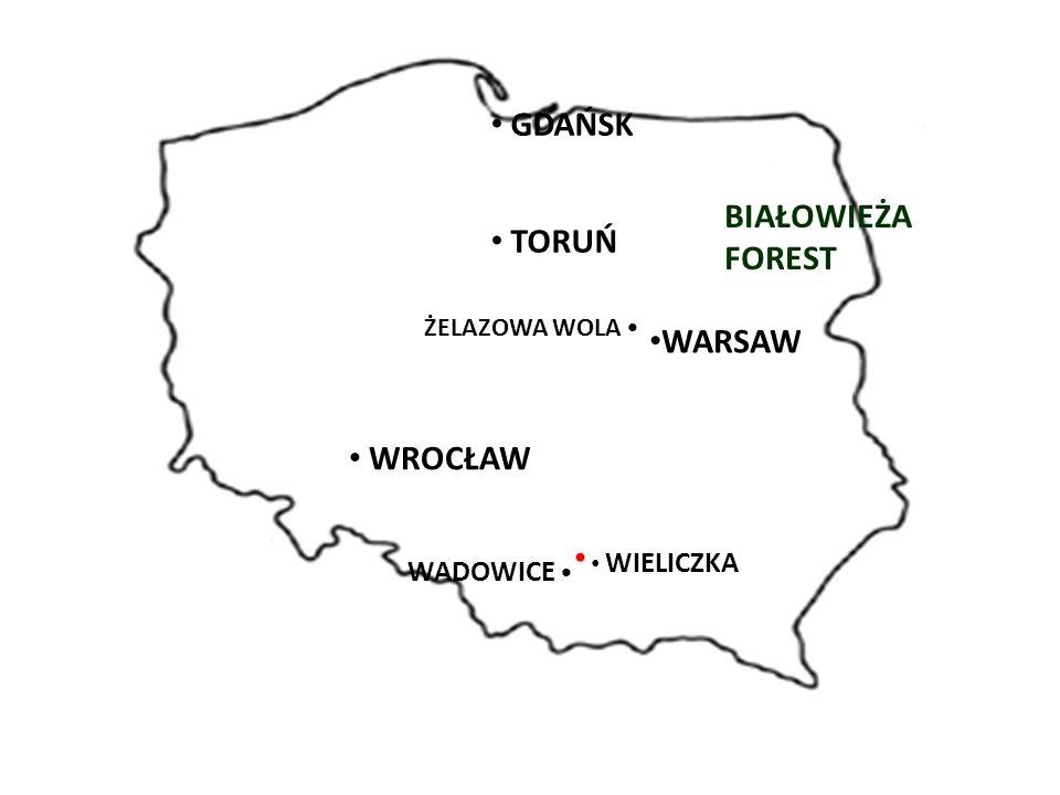 WARSAW BIAŁOWIEŻA FOREST GDAŃSK TORUŃ ŻELAZOWA WOLA WROCŁAW WIELICZKA WADOWICE