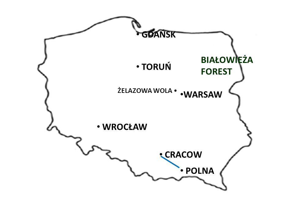 WARSAW BIAŁOWIEŻA FOREST GDAŃSK TORUŃ ŻELAZOWA WOLA WROCŁAW CRACOW POLNA