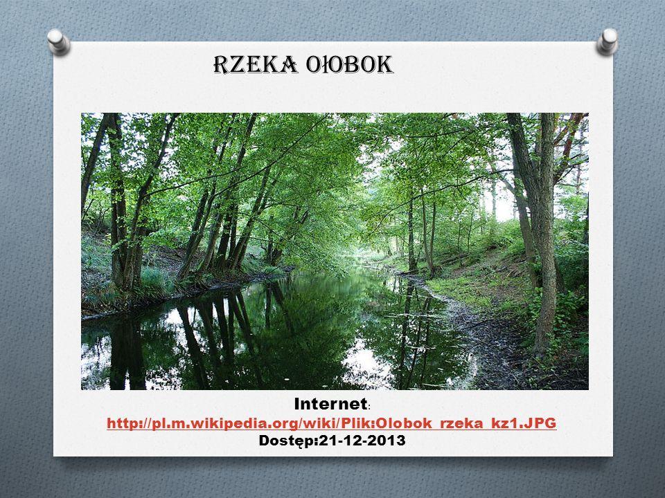 Rzeka O ł obok Internet : http://pl.m.wikipedia.org/wiki/Plik:Olobok_rzeka_kz1.JPG Dostęp:21-12-2013