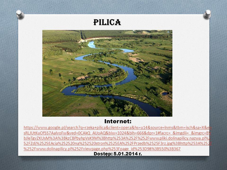 Wis ł a Internet: http://pl.wikipedia.org/wiki/Plik:Rzeka_Wisła_0004.jpg Dostęp: 20.12.2013r.