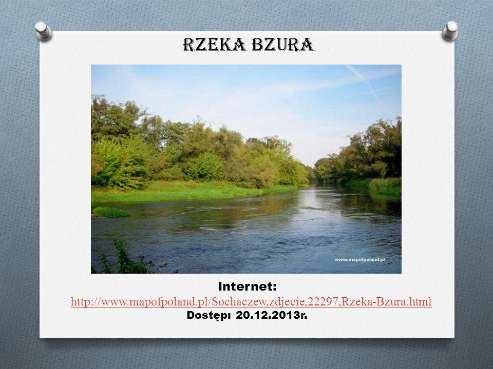 Rzeka Bzura.