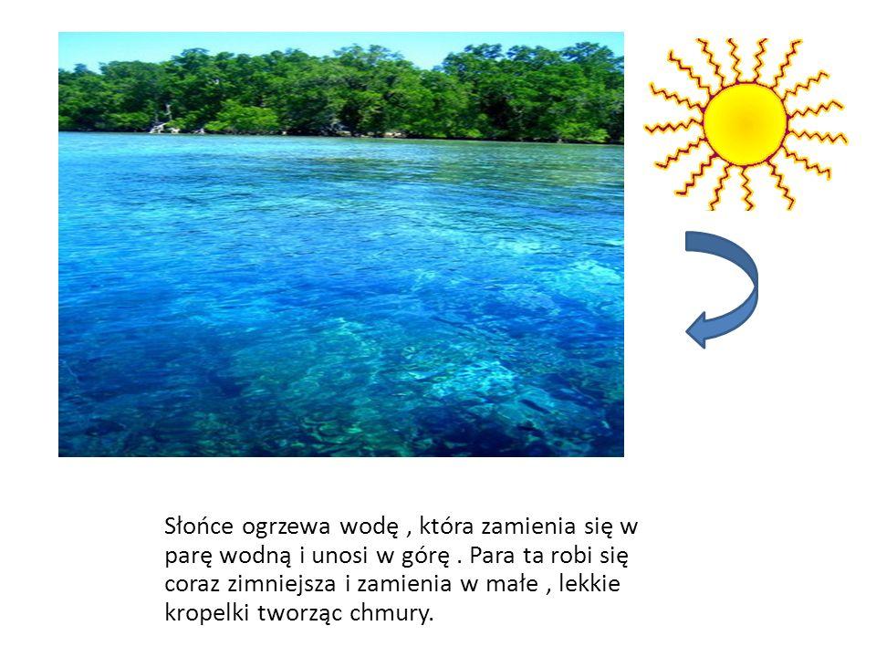 Słońce ogrzewa wodę, która zamienia się w parę wodną i unosi w górę. Para ta robi się coraz zimniejsza i zamienia w małe, lekkie kropelki tworząc chmu