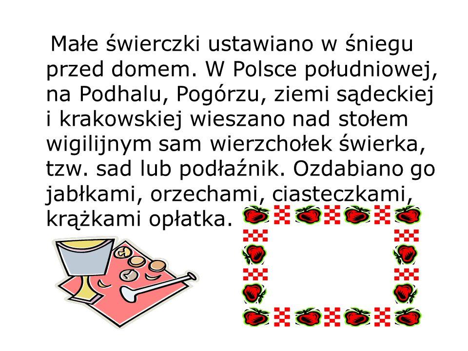 Małe świerczki ustawiano w śniegu przed domem. W Polsce południowej, na Podhalu, Pogórzu, ziemi sądeckiej i krakowskiej wieszano nad stołem wigilijnym