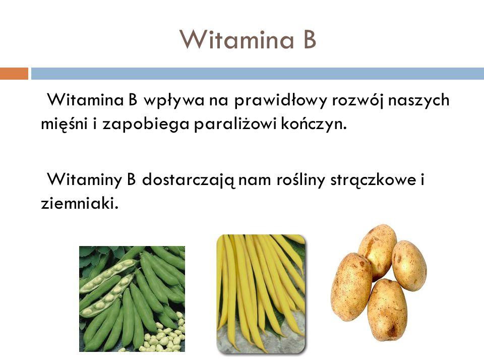 Witamina B Witamina B wpływa na prawidłowy rozwój naszych mięśni i zapobiega paraliżowi kończyn. Witaminy B dostarczają nam rośliny strączkowe i ziemn