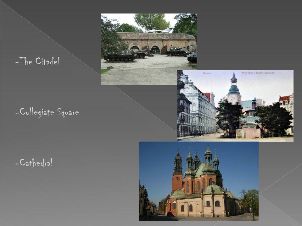 -the Castle (Culture centre) -Old Market -the City Stadium