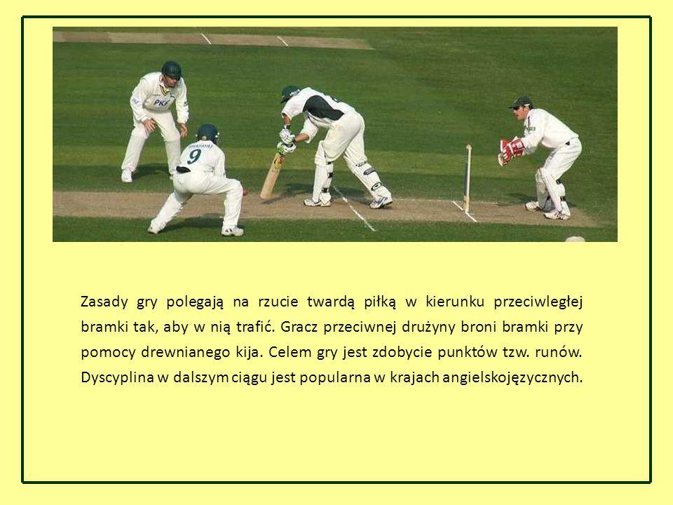 Zasady gry polegają na rzucie twardą piłką w kierunku przeciwległej bramki tak, aby w nią trafić. Gracz przeciwnej drużyny broni bramki przy pomocy dr