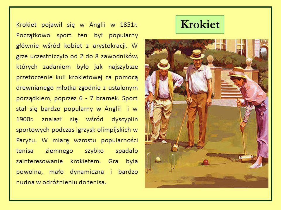 Krokiet pojawił się w Anglii w 1851r. Początkowo sport ten był popularny głównie wśród kobiet z arystokracji. W grze uczestniczyło od 2 do 8 zawodnikó