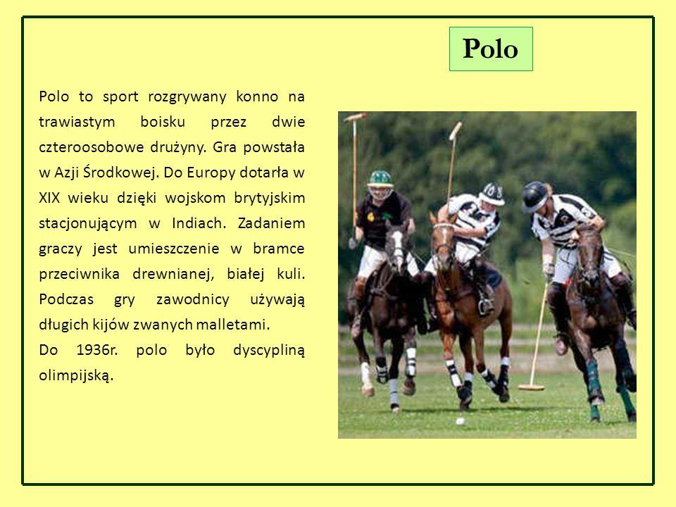 Polo Polo to sport rozgrywany konno na trawiastym boisku przez dwie czteroosobowe drużyny. Gra powstała w Azji Środkowej. Do Europy dotarła w XIX wiek