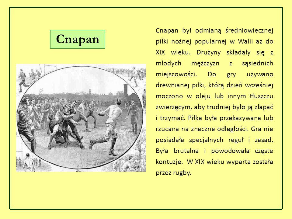 Cnapan był odmianą średniowiecznej piłki nożnej popularnej w Walii aż do XIX wieku. Drużyny składały się z młodych mężczyzn z sąsiednich miejscowości.
