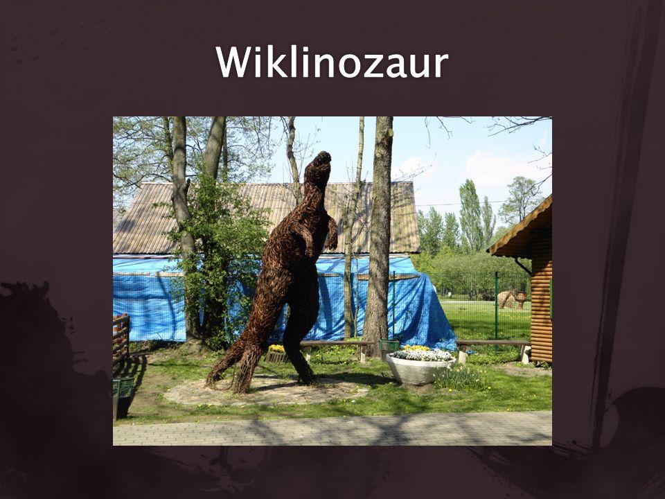 Korzystałem z: Nowy Tomyśl. pl Zoonowytomysl. pl Google grafika.pl Panoramio.com
