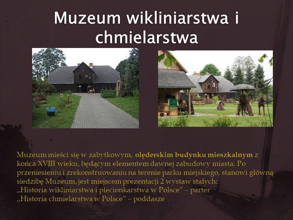 Muzeum mieści się w zabytkowym, olęderskim budynku mieszkalnym z końca XVIII wieku, będącym elementem dawnej zabudowy miasta. Po przeniesieniu i zreko