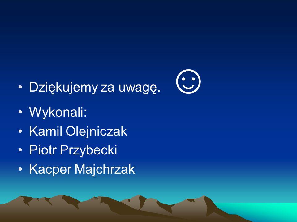 Dziękujemy za uwagę. Wykonali: Kamil Olejniczak Piotr Przybecki Kacper Majchrzak